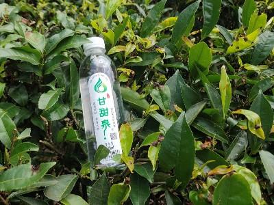甘甜泉:投资健康零风险--为你的一生做个科学的水计划